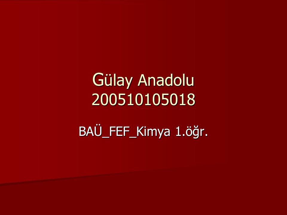 G ülay Anadolu 200510105018 BAÜ_FEF_Kimya 1.öğr.