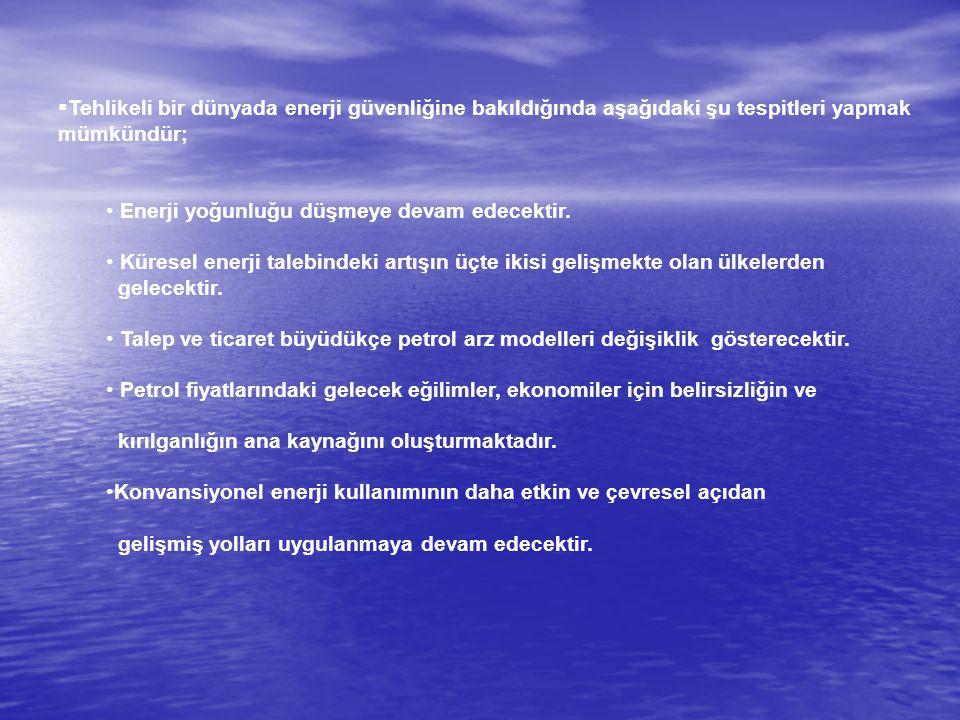  Kısacık, Sina (2010) AB Enerji Politikasının Etkin Olarak Uygulanmasında Türkiye'nin Önemi içinde Burak Küntay (ed.), 'Hükümet ve Liderlik Okulu Düşünce Grubu'.