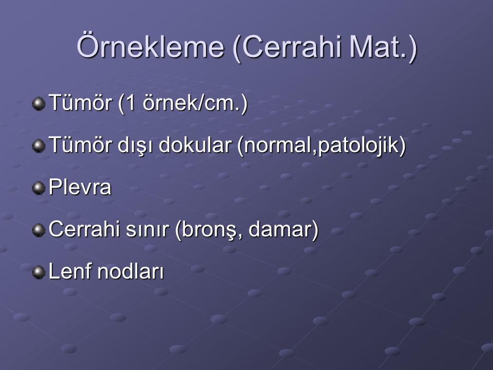 Örnekleme (Cerrahi Mat.) Tümör (1 örnek/cm.) Tümör dışı dokular (normal,patolojik) Plevra Cerrahi sınır (bronş, damar) Lenf nodları