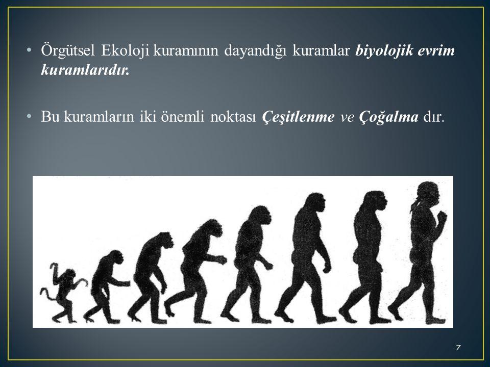 Örgütsel Ekoloji kuramının dayandığı kuramlar biyolojik evrim kuramlarıdır. Bu kuramların iki önemli noktası Çeşitlenme ve Çoğalma dır. 7
