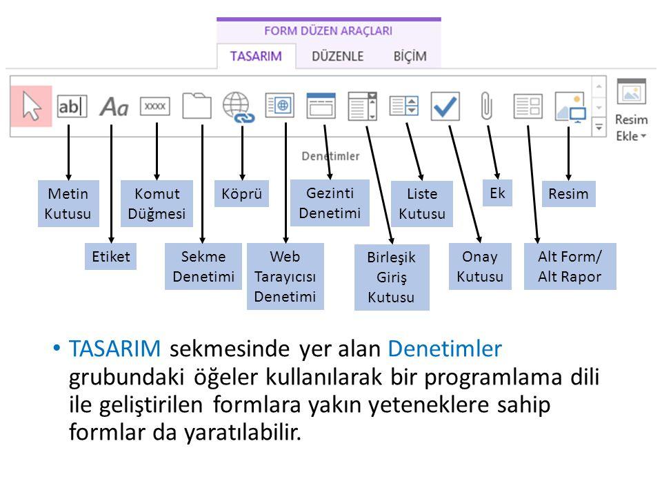 TASARIM sekmesinde yer alan Denetimler grubundaki öğeler kullanılarak bir programlama dili ile geliştirilen formlara yakın yeteneklere sahip formlar d