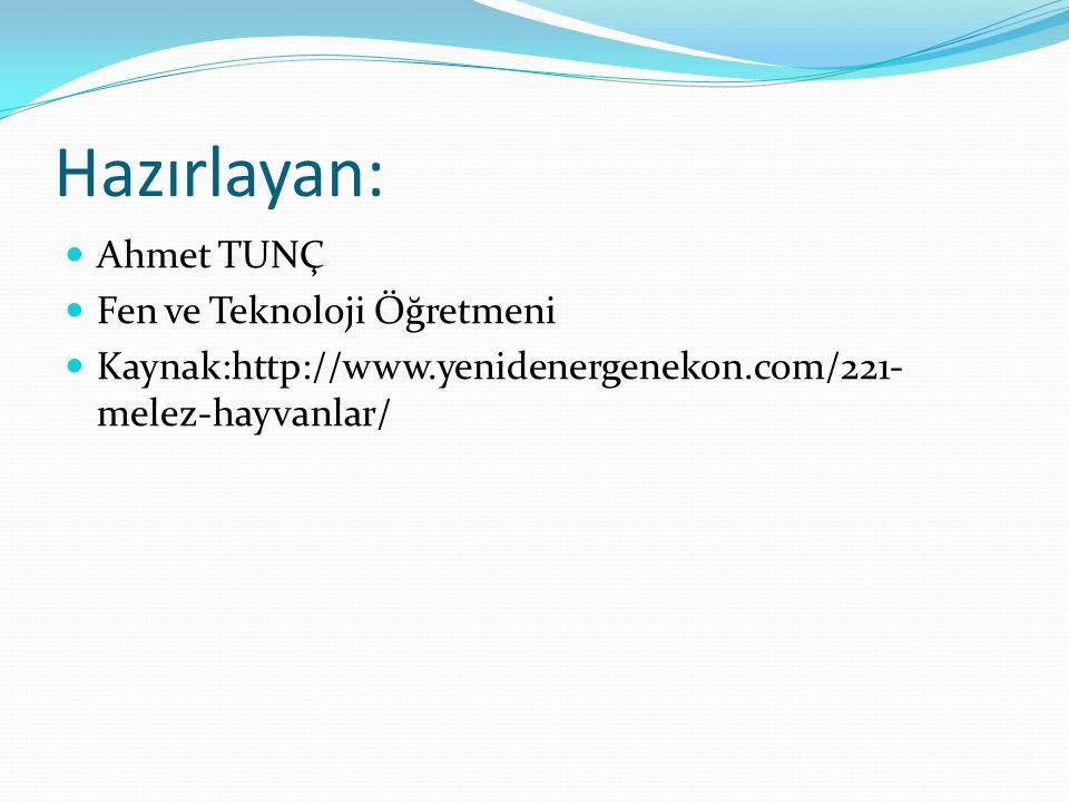 Hazırlayan: Ahmet TUNÇ Fen ve Teknoloji Öğretmeni Kaynak:http://www.yenidenergenekon.com/221- melez-hayvanlar/