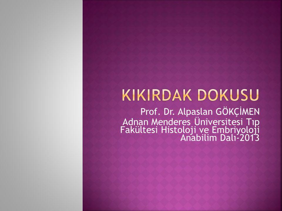Prof. Dr. Alpaslan GÖKÇİMEN Adnan Menderes Üniversitesi Tıp Fakültesi Histoloji ve Embriyoloji Anabilim Dalı-2013