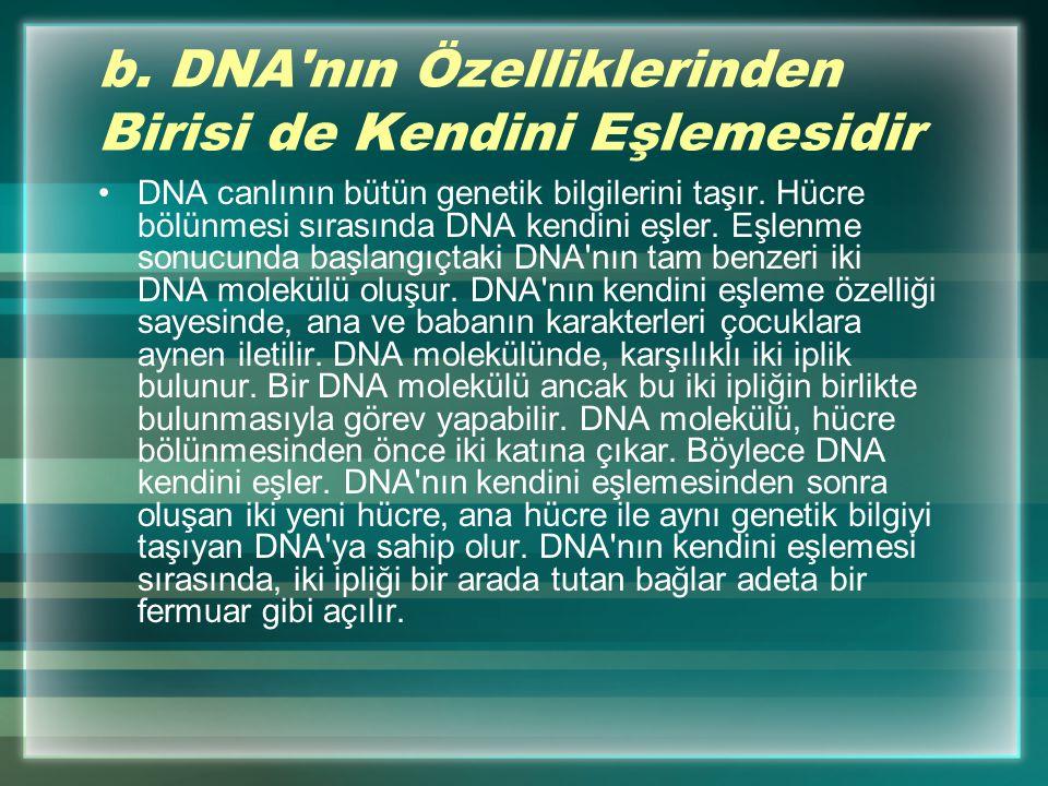 Mendel in başarılı olmasında hem matematik hem de biyoloji öğrenimi görmesinin büyük bir etkisi vardır.