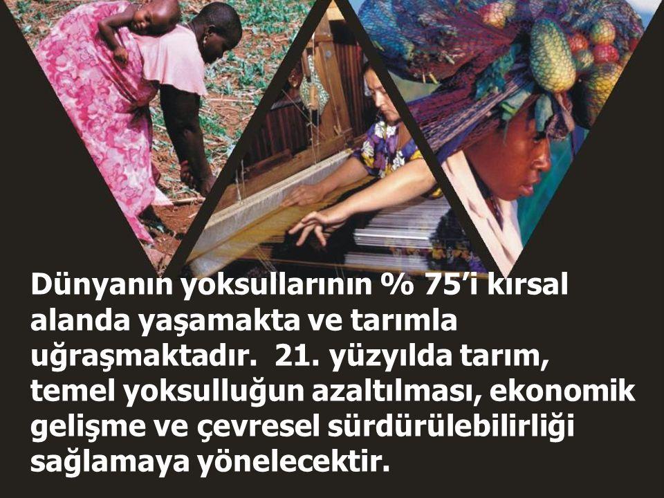 World Development Report 2008 2 Dünyanın yoksullarının % 75'i kırsal alanda yaşamakta ve tarımla uğraşmaktadır. 21. yüzyılda tarım, temel yoksulluğun