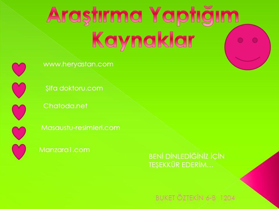 www.heryastan.com Şifa doktoru.com Chatoda.net Masaustu-resimleri.com Manzara1.com BENİ DİNLEDİĞİNİZ İÇİN TEŞEKKÜR EDERİM… BUKET ÖZTEKİN 6-B 1204
