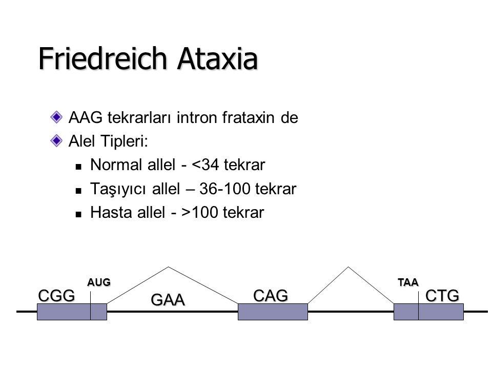 AAG tekrarları intron frataxin de Alel Tipleri: Normal allel - <34 tekrar Taşıyıcı allel – 36-100 tekrar Hasta allel - >100 tekrar Friedreich Ataxia A