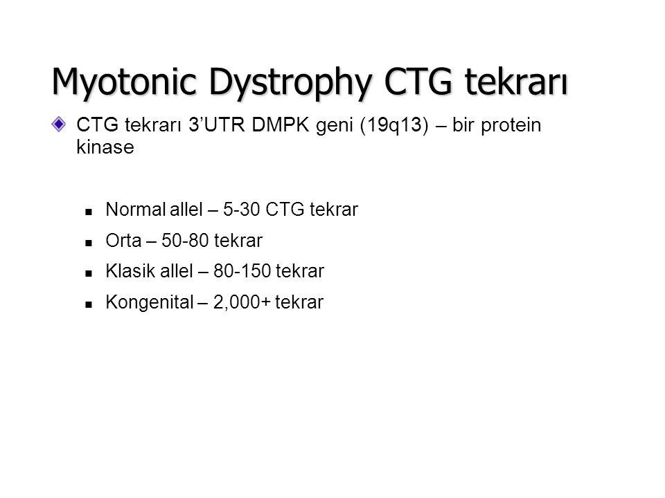 CTG tekrarı 3'UTR DMPK geni (19q13) – bir protein kinase Normal allel – 5-30 CTG tekrar Orta – 50-80 tekrar Klasik allel – 80-150 tekrar Kongenital –