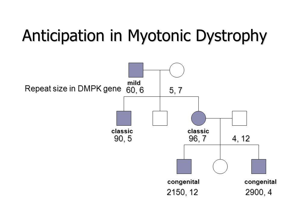 Üçlü nükleotid tekrarları hastalıklar oluşturabilir.