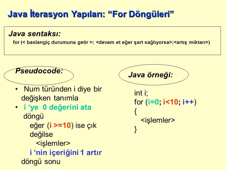 Java örneği: do { deyim 1;...