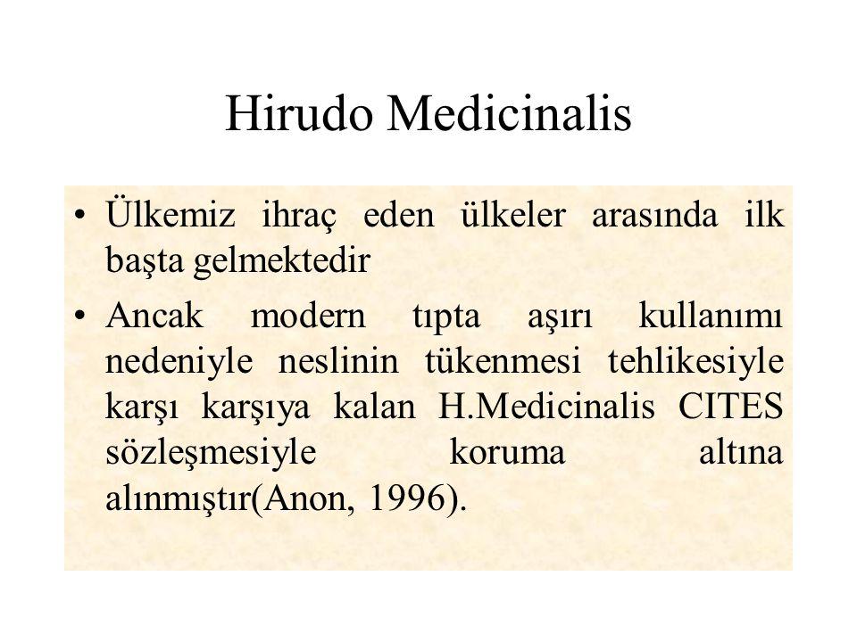 Hirudo Medicinalis Ülkemiz ihraç eden ülkeler arasında ilk başta gelmektedir Ancak modern tıpta aşırı kullanımı nedeniyle neslinin tükenmesi tehlikesi