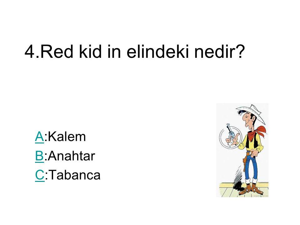4.Red kid in elindeki nedir AA:Kalem BB:Anahtar CC:Tabanca