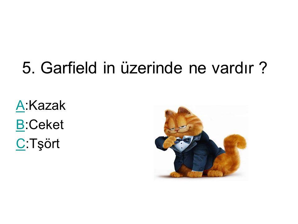 5. Garfield in üzerinde ne vardır AA:Kazak BB:Ceket CC:Tşört