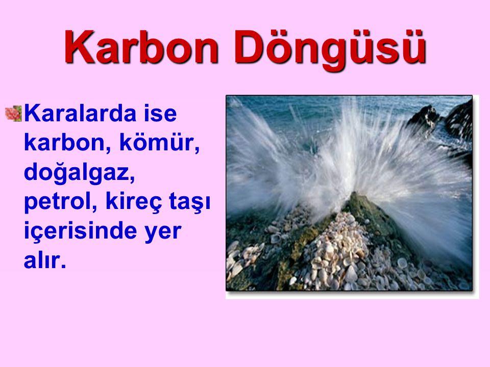 Karbon Döngüsü Karalarda ise karbon, kömür, doğalgaz, petrol, kireç taşı içerisinde yer alır.