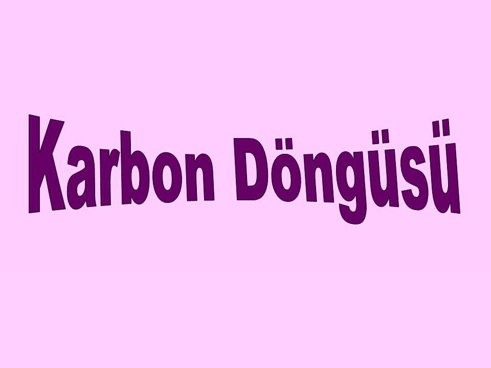 NOT Bununla birlikte karbondioksit günlük ve mevsimlik sıcaklıkların aşırı yükselmesine ve düşmesine engel olur.