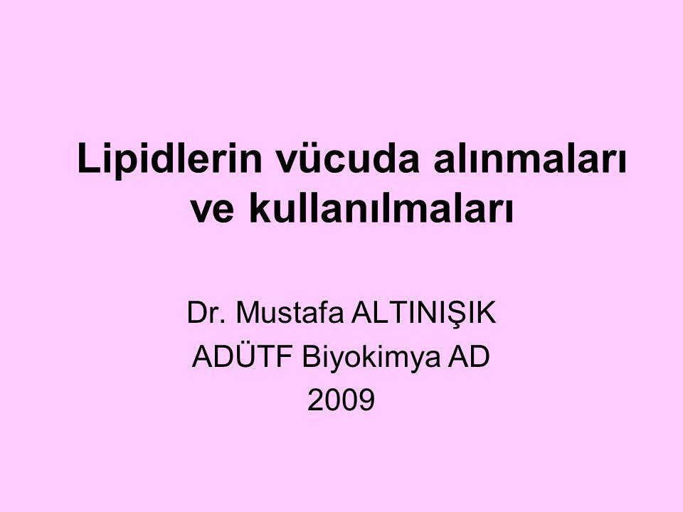 Lipidlerin vücuda alınmaları ve kullanılmaları Dr. Mustafa ALTINIŞIK ADÜTF Biyokimya AD 2009