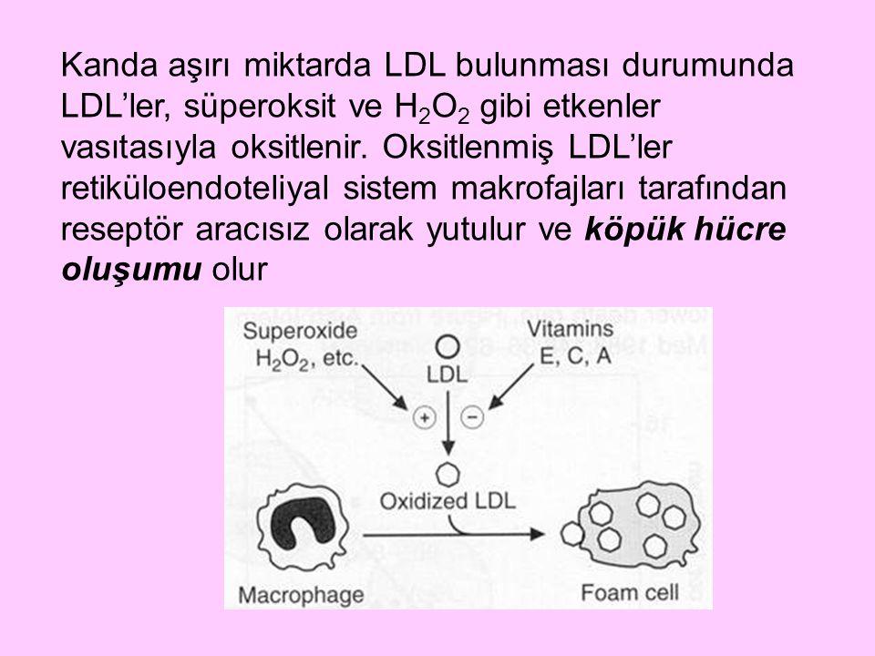 Kanda aşırı miktarda LDL bulunması durumunda LDL'ler, süperoksit ve H 2 O 2 gibi etkenler vasıtasıyla oksitlenir. Oksitlenmiş LDL'ler retiküloendoteli
