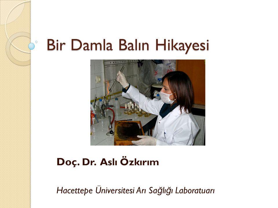 Bir Damla Balın Hikayesi Doç. Dr. Aslı Özkırım Hacettepe Üniversitesi Arı Sa ğ lı ğ ı Laboratuarı