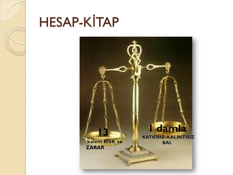 HESAP-K İ TAP 13 kalem R İ SK ve ZARAR 1 damla KATKISIZ- KALINTISIZ BAL