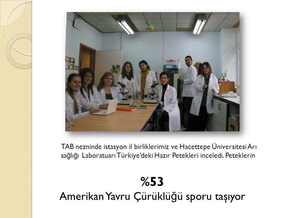 TAB nezninde istasyon il birliklerimiz ve Hacettepe Üniversitesi Arı sa ğ lı ğ ı Laboratuarı Türkiye'deki Hazır Petekleri inceledi. Peteklerin %53 Ame