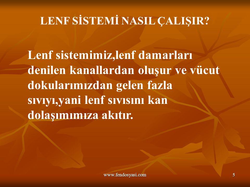 www.fendosyasi.com5 LENF SİSTEMİ NASIL ÇALIŞIR? Lenf sistemimiz,lenf damarları denilen kanallardan oluşur ve vücut dokularımızdan gelen fazla sıvıyı,y