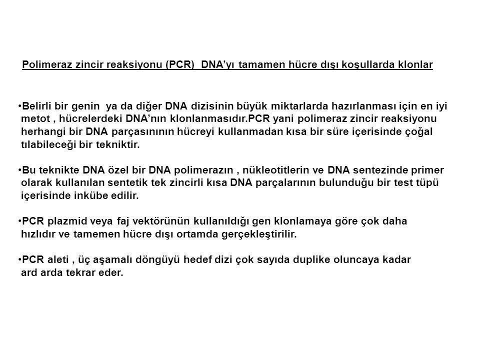 Polimeraz zincir reaksiyonu (PCR) DNA'yı tamamen hücre dışı koşullarda klonlar Belirli bir genin ya da diğer DNA dizisinin büyük miktarlarda hazırlanm