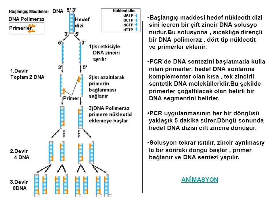 Başlangıç maddesi hedef nükleotit dizi sini içeren bir çift zincir DNA solusyo nudur.Bu solusyona, sıcaklığa dirençli bir DNA polimeraz, dört tip nükl