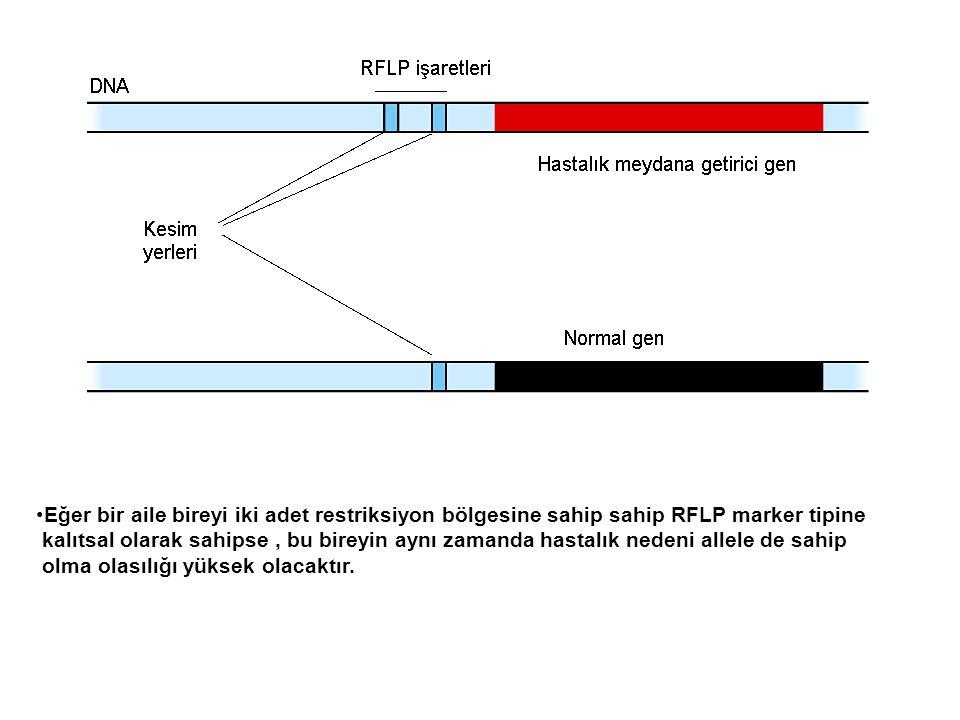 Eğer bir aile bireyi iki adet restriksiyon bölgesine sahip sahip RFLP marker tipine kalıtsal olarak sahipse, bu bireyin aynı zamanda hastalık nedeni a