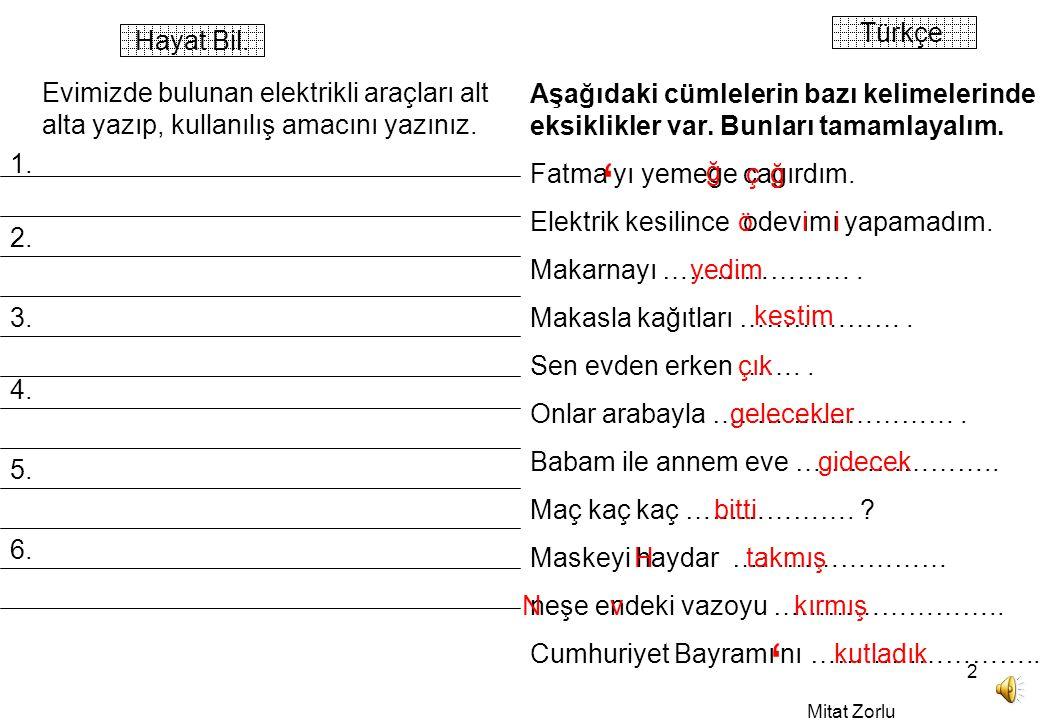Mitat Zorlu 2 Türkçe Hayat Bil.