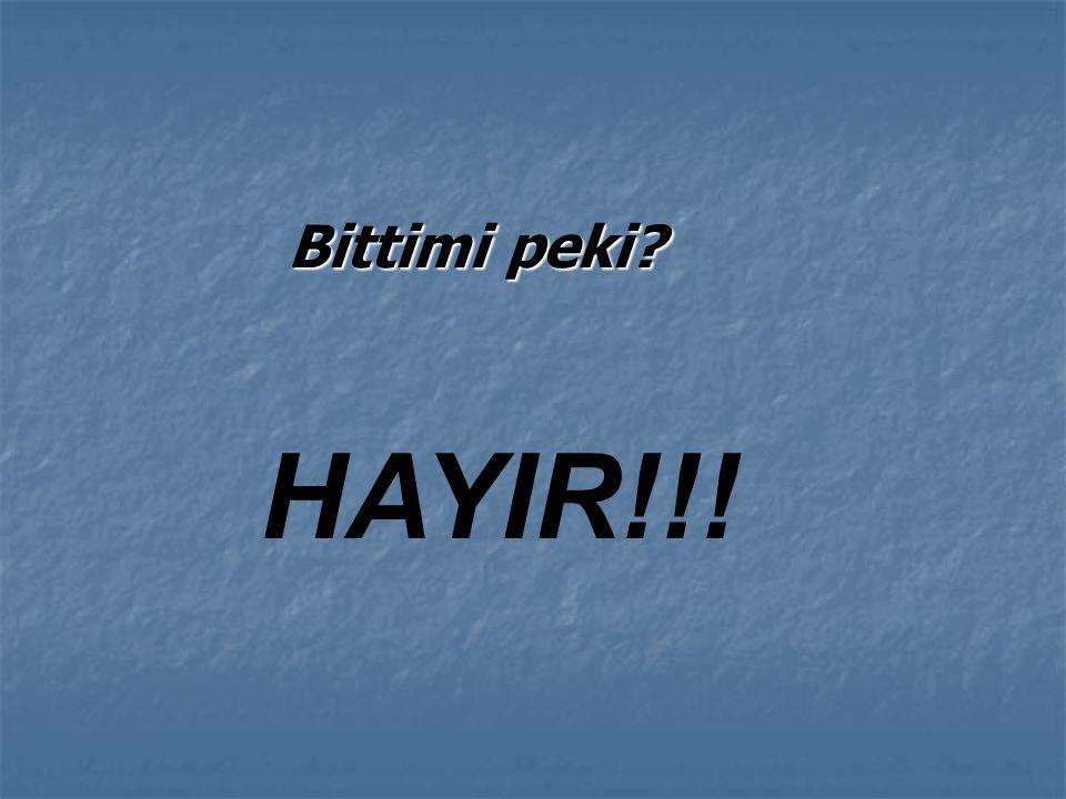 Çocuklara oyunun içinde bazı ülkeleri tanıtıcı bilgi de veriliyor. Peki Türkiye nasıl tanıtılıyor?