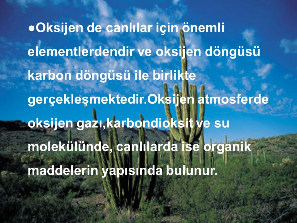●Oksijen de canlılar için önemli elementlerdendir ve oksijen döngüsü karbon döngüsü ile birlikte gerçekleşmektedir.Oksijen atmosferde oksijen gazı,karbondioksit ve su molekülünde, canlılarda ise organik maddelerin yapısında bulunur.