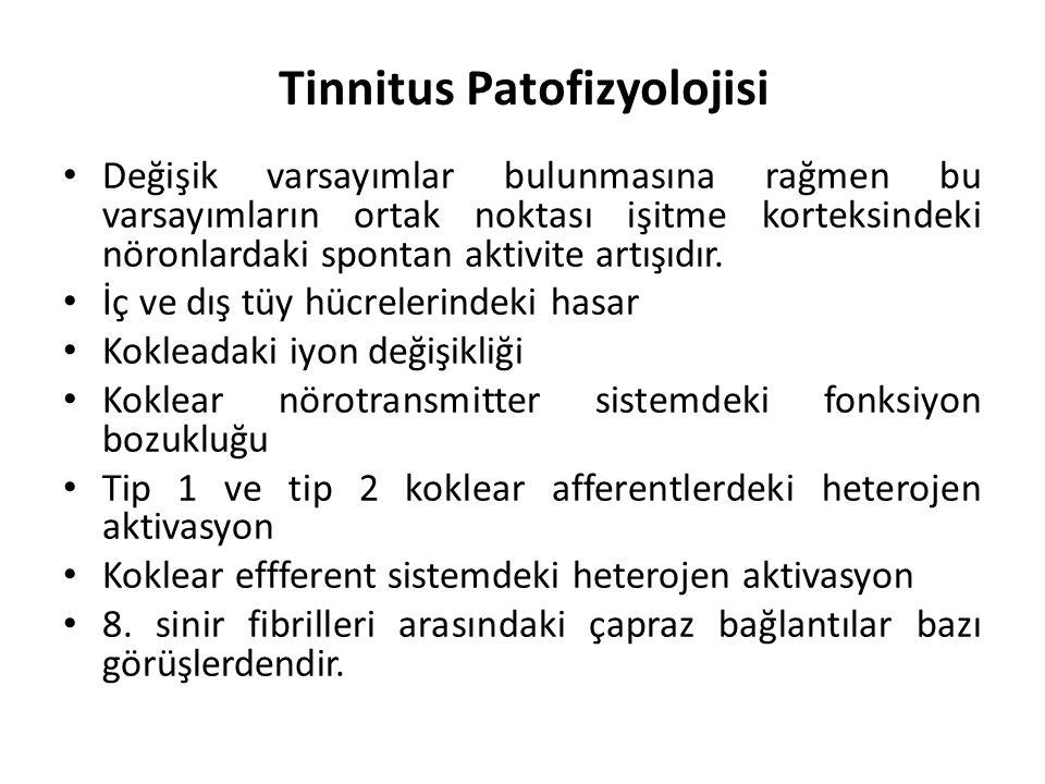 Tinnitusun algısal özelliği (frekansı) Eşlik eden semptomlar: (kulakta dolgunluk, işitme kaybı, vertigo vb.