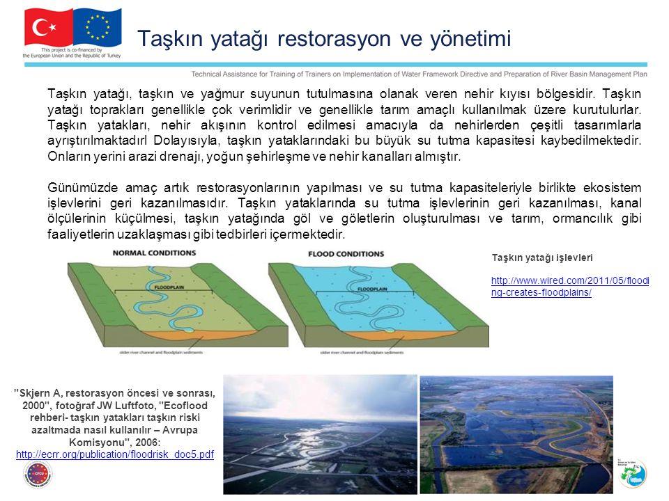 Taşkın yatağı restorasyon ve yönetimi Taşkın yatağı, taşkın ve yağmur suyunun tutulmasına olanak veren nehir kıyısı bölgesidir.