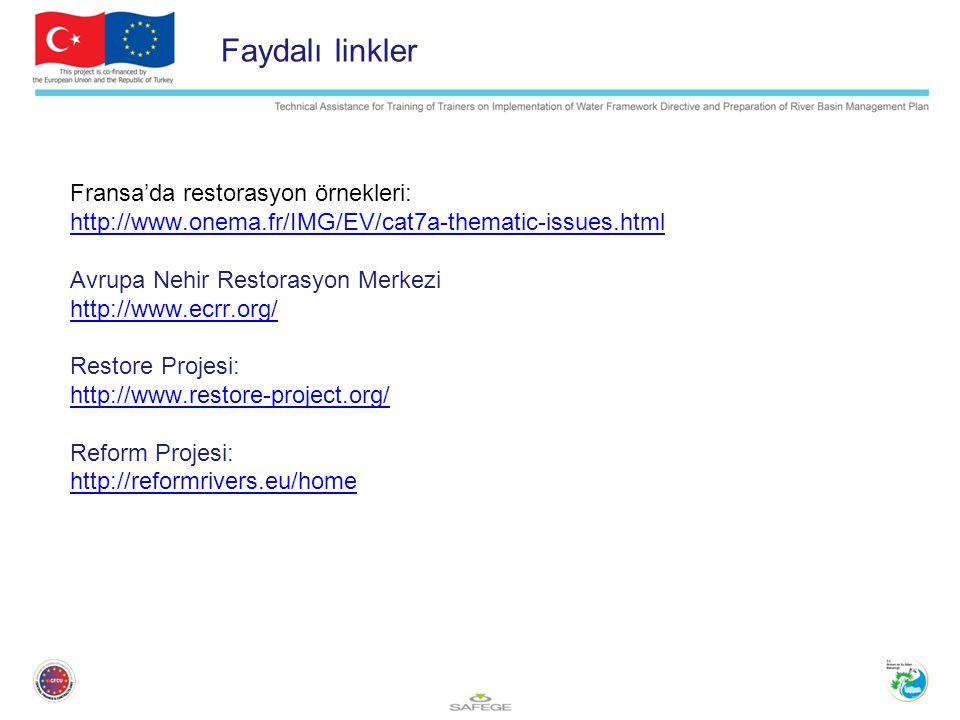 Faydalı linkler Fransa'da restorasyon örnekleri: http://www.onema.fr/IMG/EV/cat7a-thematic-issues.html Avrupa Nehir Restorasyon Merkezi http://www.ecrr.org/ Restore Projesi: http://www.restore-project.org/ Reform Projesi: http://reformrivers.eu/home
