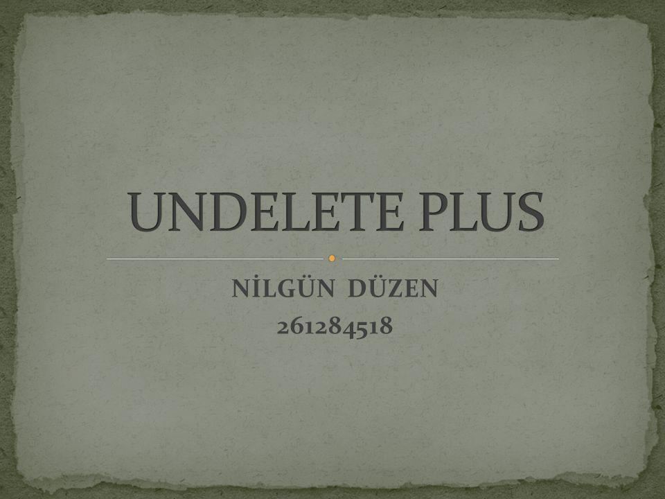 NİLGÜN DÜZEN 261284518