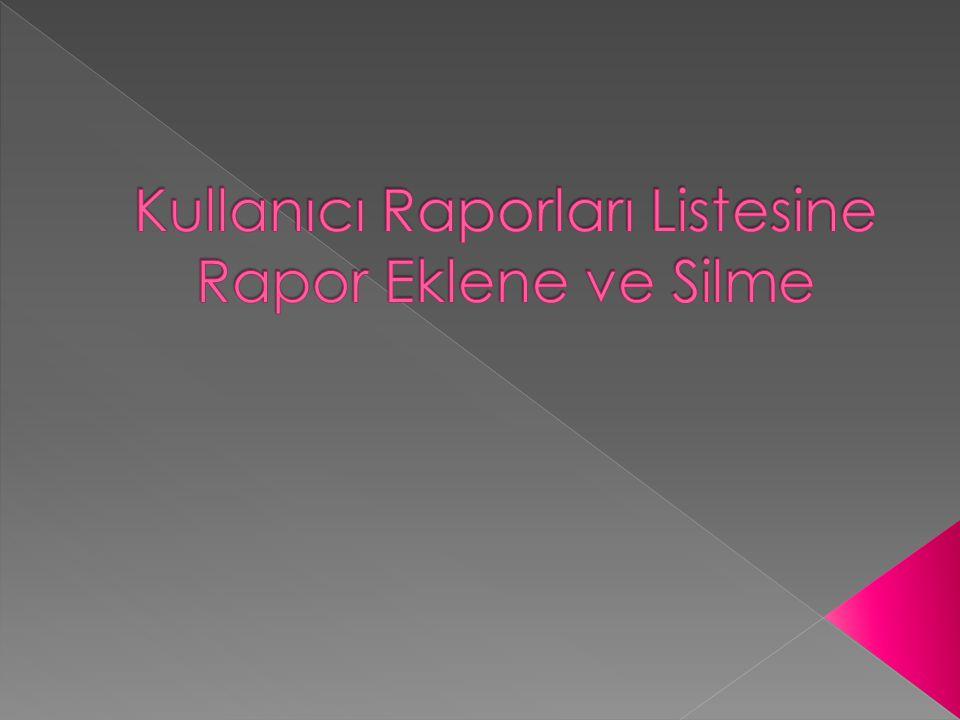 Rapor kullanıcı raporlarınızdan silinmiştir. Programı kapatıp tekrar açtığınızda aktif olacaktır.