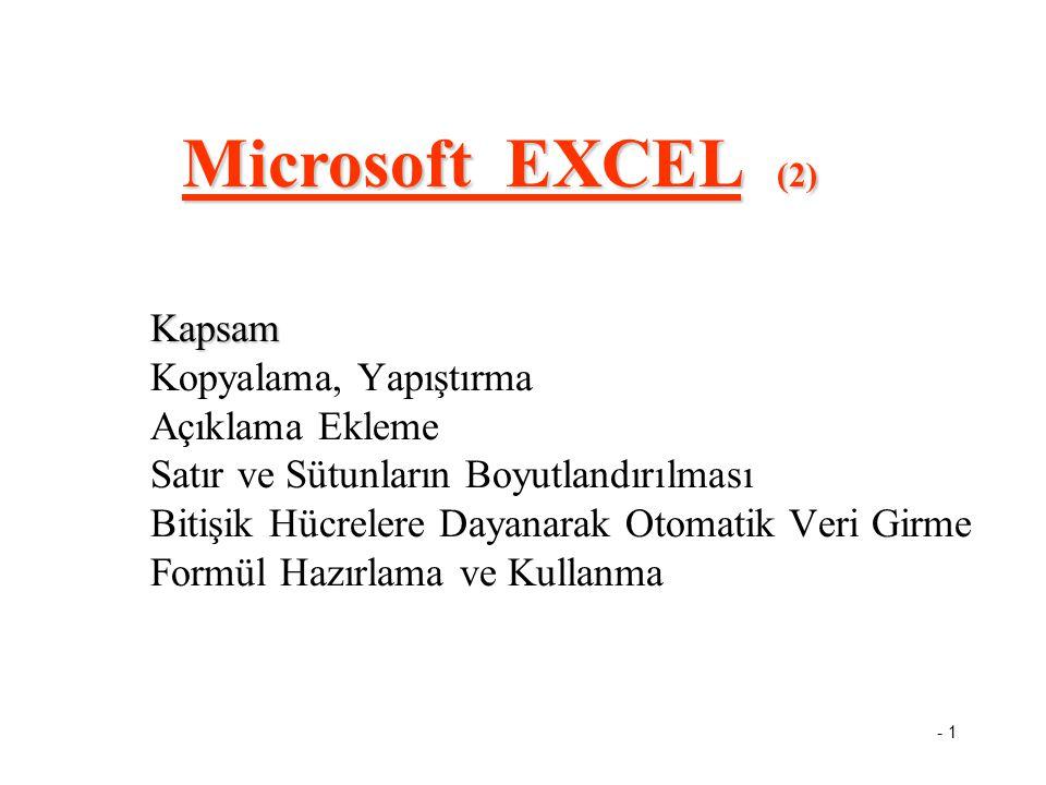 - 1 Kapsam Kapsam Kopyalama, Yapıştırma Açıklama Ekleme Satır ve Sütunların Boyutlandırılması Bitişik Hücrelere Dayanarak Otomatik Veri Girme Formül Hazırlama ve Kullanma Microsoft EXCEL (2)