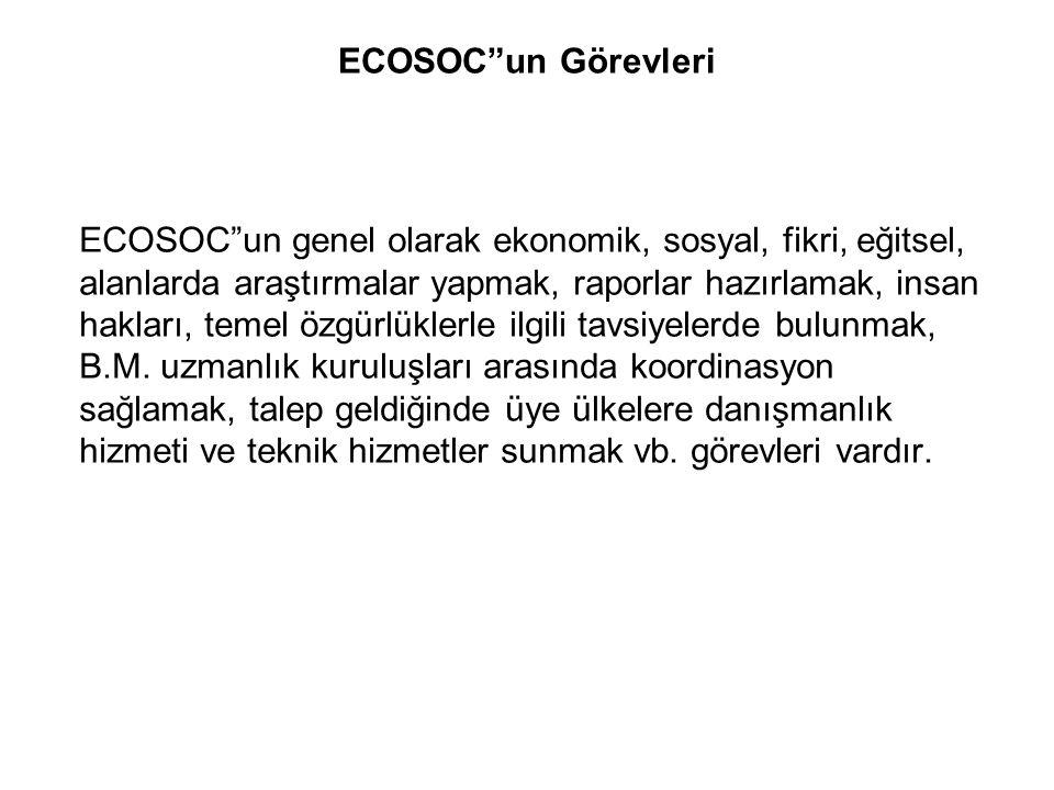 """ECOSOC""""un Görevleri ECOSOC""""un genel olarak ekonomik, sosyal, fikri, eğitsel, alanlarda araştırmalar yapmak, raporlar hazırlamak, insan hakları, temel"""