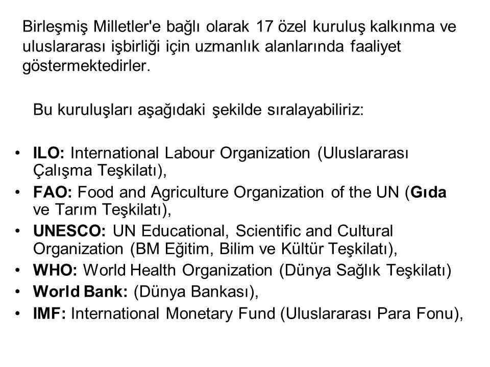 Birleşmiş Milletler'e bağlı olarak 17 özel kuruluş kalkınma ve uluslararası işbirliği için uzmanlık alanlarında faaliyet göstermektedirler. Bu kuruluş