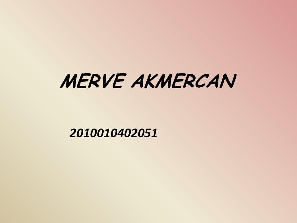 MERVE AKMERCAN 2010010402051