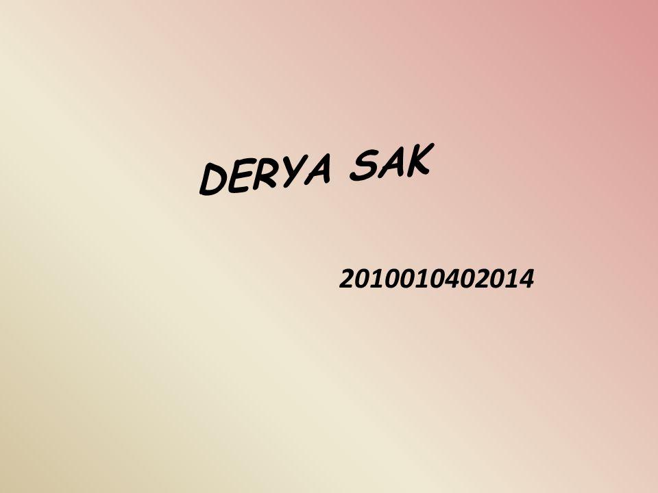 DERYA SAK 2010010402014