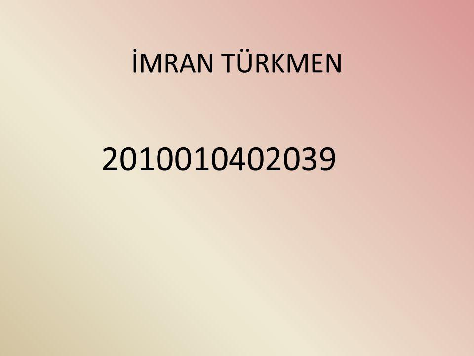İMRAN TÜRKMEN 2010010402039