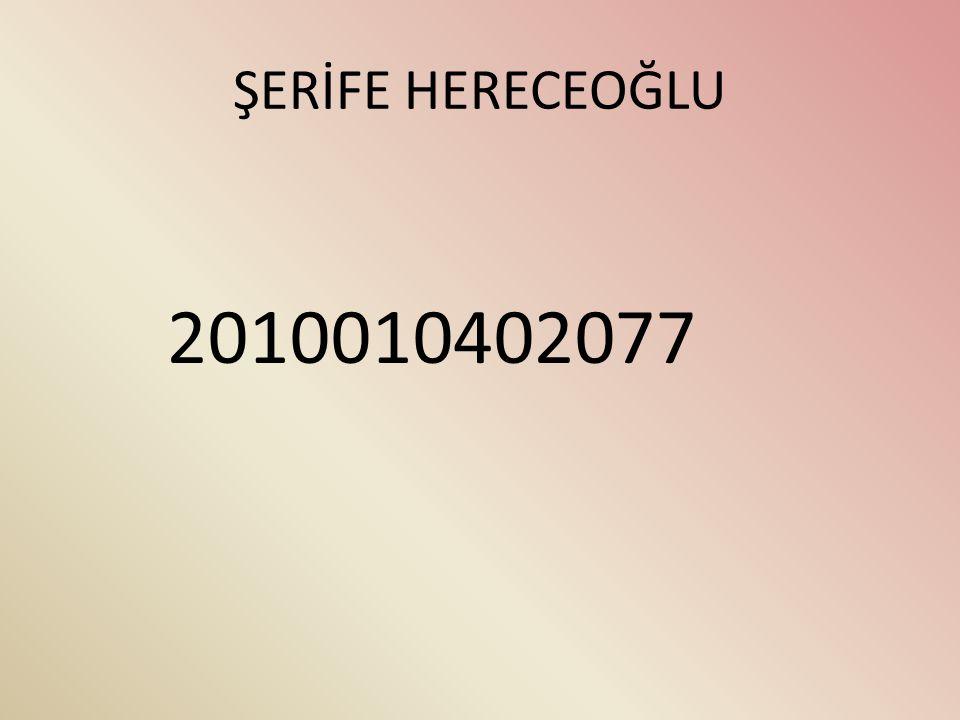 ŞERİFE HERECEOĞLU 2010010402077