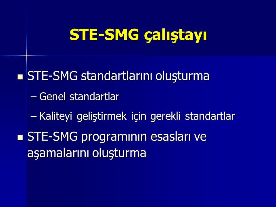 STE-SMG çalıştayı STE-SMG standartlarını oluşturma STE-SMG standartlarını oluşturma –Genel standartlar –Kaliteyi geliştirmek için gerekli standartlar STE-SMG programının esasları ve aşamalarını oluşturma STE-SMG programının esasları ve aşamalarını oluşturma