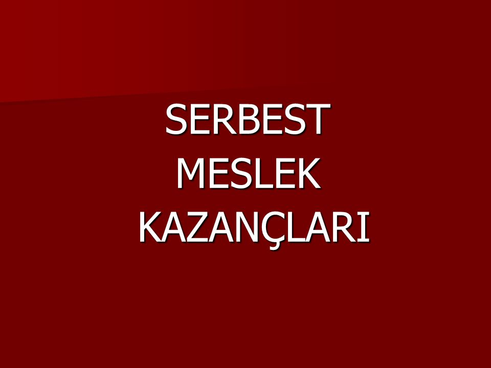 SERBEST MESLEK KAZANÇLARI