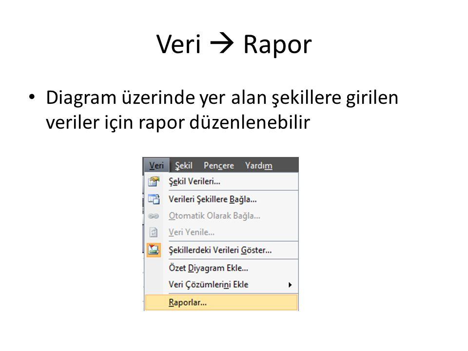 Veri  Rapor Diagram üzerinde yer alan şekillere girilen veriler için rapor düzenlenebilir