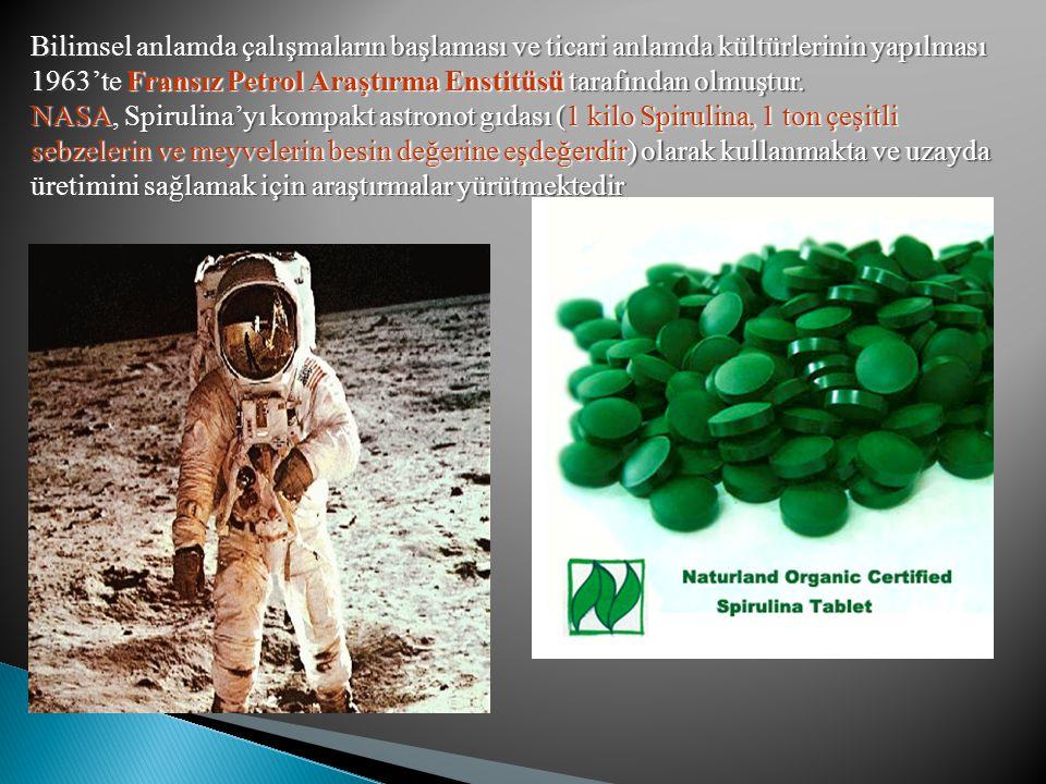 Bilimsel anlamda çalışmaların başlaması ve ticari anlamda kültürlerinin yapılması 1963'te Fransız Petrol Araştırma Enstitüsü tarafından olmuştur. NASA