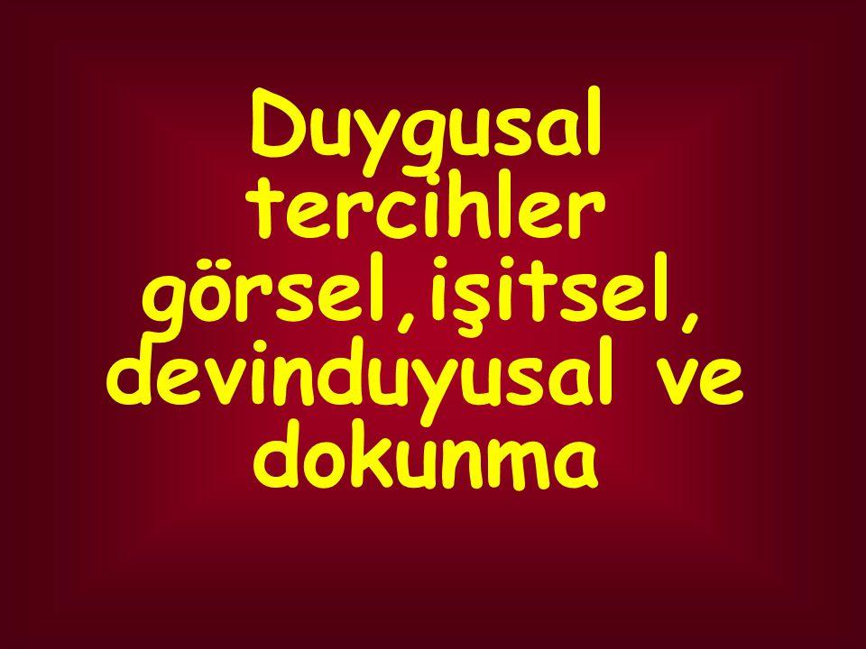ÖĞRENME TÜRLERİ DUYGUSAL TERCİHLER