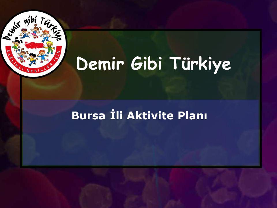 Demir Gibi Türkiye Bursa İli Aktivite Planı