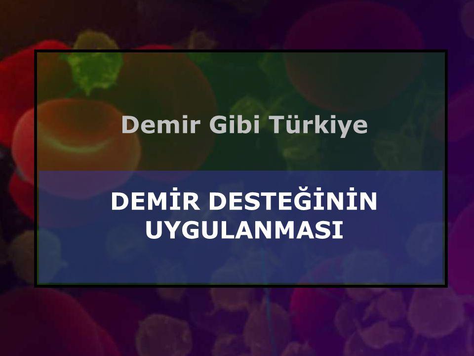 Demir Gibi Türkiye DEMİR DESTEĞİNİN UYGULANMASI